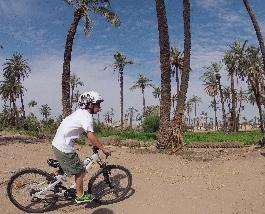 Visite de la palmeraie de Marrakech à vélo